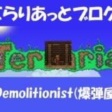 NPC Demolitionist(爆弾屋さん)