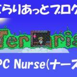 NPC Nurse(ナース:看護師)