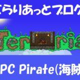 NPC Pirate(海賊)