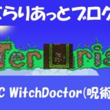 NPC WitchDoctor(呪術医)
