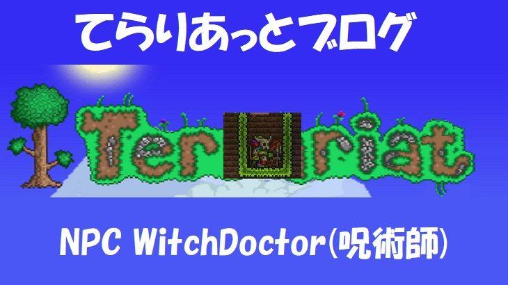 NPC WitchDoctor(呪術医)