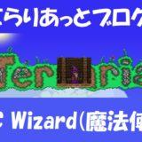 NPC Wizard(魔法使い)